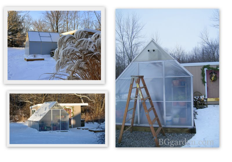 Greenhouse : Grow Green Year-Round